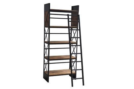 Otb Sanjit Bookcase W/Ladder - Main