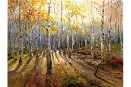 PICTURE-BIRCH FOREST