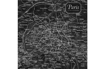Display product reviews for PICTURE-VINTAGE MAP PARIS