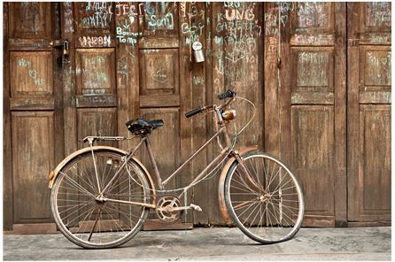Display product reviews for PICTURE-VINTAGE GRAFITTI BIKE