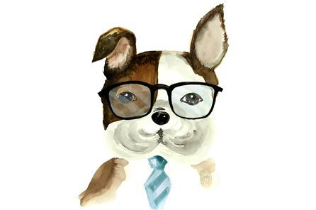 Display product reviews for PICTURE-DOG IN SPECTACLES
